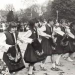 танцови състави (3)